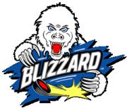 Brookings Blizzard