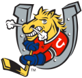 BARRIE COLTS